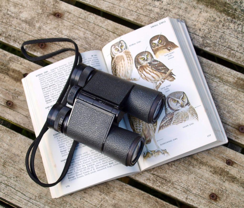 black binoculars on opened book