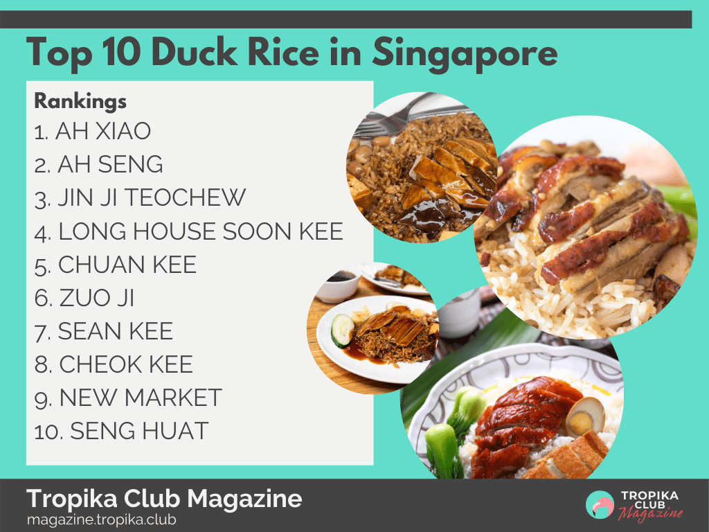 Top 10 Duck Rice in Singapore