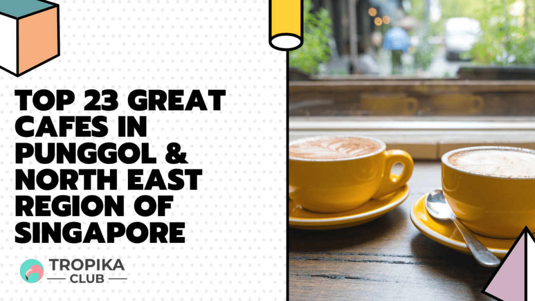 Tropika YouTube Thumbnails - Top 23 Great Cafes in Punggol, Sengkang, Seletar and the North East Region of Singapore [2021 Edition]